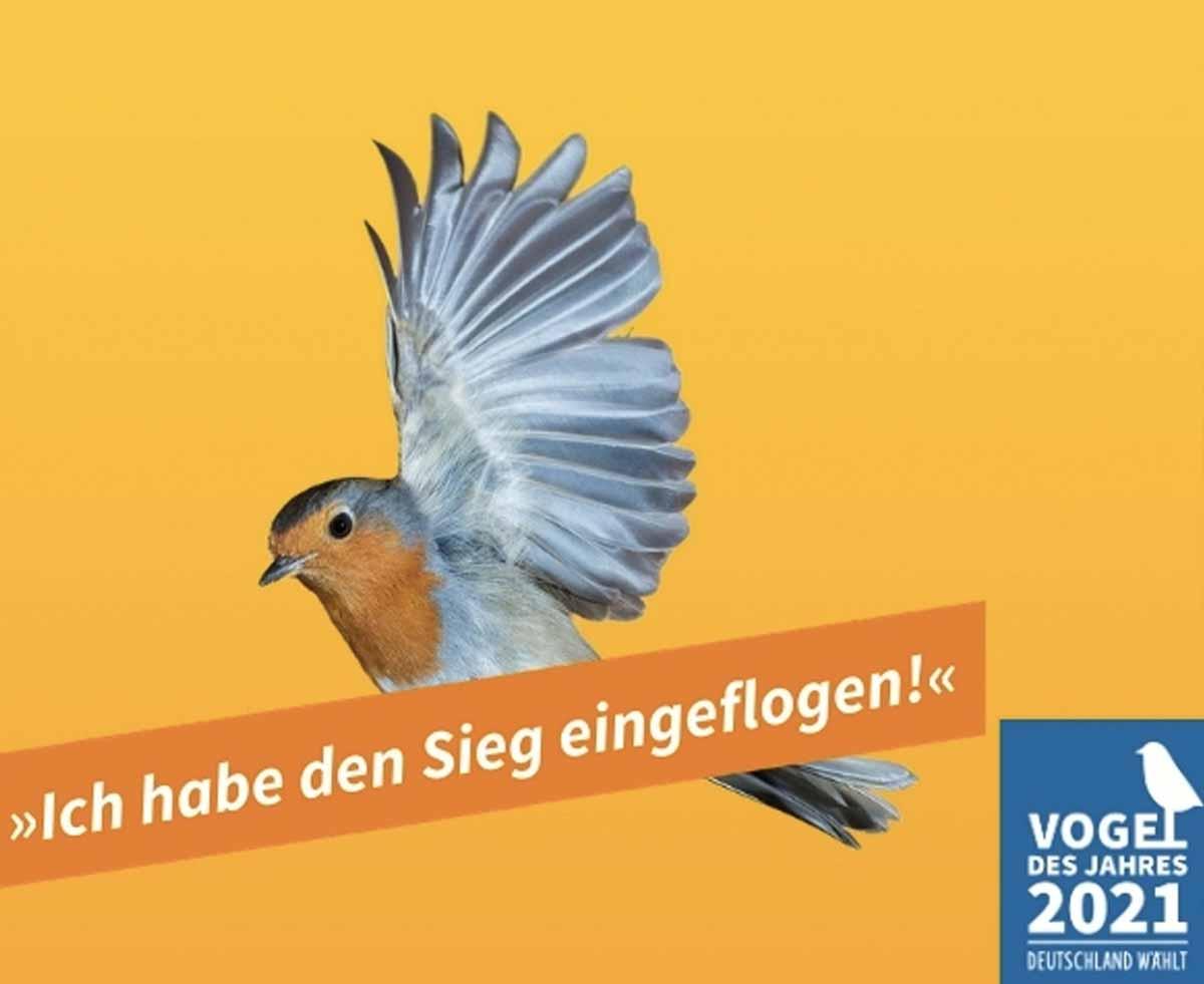 Vogel des Jahres 2021